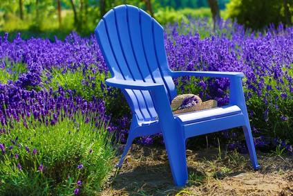 lavendel die geheimwaffe gegen stressbedingten h heren blutzucker diabetesade. Black Bedroom Furniture Sets. Home Design Ideas